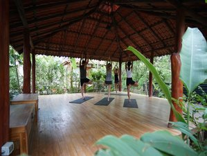 6-Daagse Surf en Yoga Retraite in Costa Rica