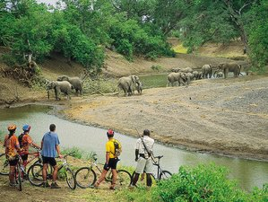 12 Days Cycling Tours and Safaris in South Africa and Botswana