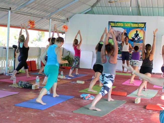 28 Days 200-Hour Yoga Teacher Training in Kerala, India