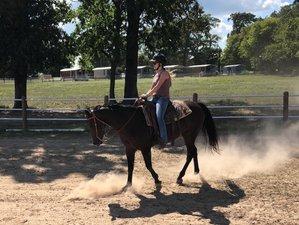 3 Day Horseback Riding and Horsemanship Vacation Near Lake Fork, Texas