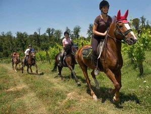 8 Day Riding and Fresco-Hunting Holidays in Tuscany, Italy