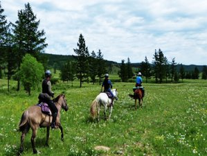 10 Day Horse Riding Holiday in Khuvsgul Lake Ride, Mongolia