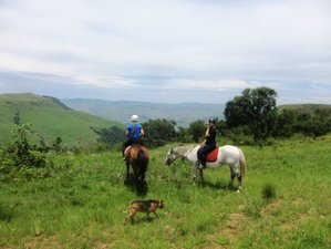 3 Days Horse Riding Holiday through the Beautiful KwaZulu Natal Midlands in South Africa