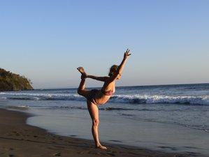 13 Days 200hr Trauma-Informed Intuitive Flow Yoga Teacher Training in Nicoya Peninsula, Costa Rica