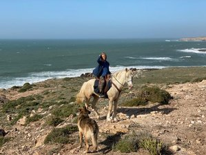 8 Day Paradise Valleys and Beach Horseback Riding Holiday in Morocco's Southern Atlantic Coast