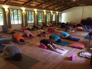 3 días de retiro de yoga, pranayama y meditación en Tapalehui, Morelos