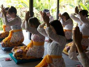 7 Days Mandala Art and Culture Meditation Retreat in Wanagiri, Bali, Indonesia