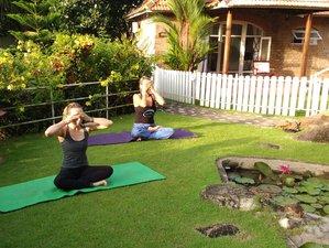 3 jours de stage de yoga et méditation courte pause dans le Kerala, Inde
