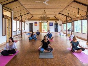 8 días de retiro de Ayurveda, meditación y yoga en Rishikesh, India