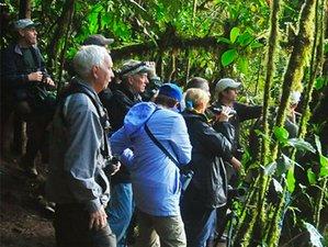 4 Day Exploring the Wonders of the Amazon Jungle of Peru in Pacaya-Samiria National Reserve, Loreto