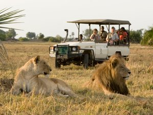 8 Days Guided Kenya Safari