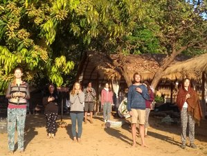 5 Weeks Full Immersion Conscious Living Meditation and Yoga Retreat in Goa