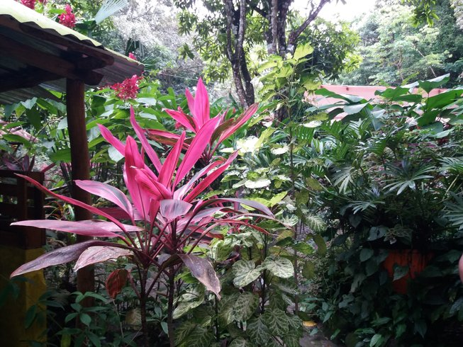 6 Days Women Only Christmas and New Year Meditation and Yoga Retreat in Caribbean Region, Colombia