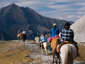 6 Days Halfway Lodge Backcountry Horse Riding Holiday in Banff, Canada