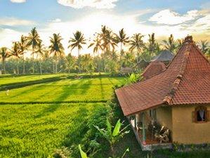 12 jours en retraite de yoga dynamique ashtanga vinyasa et detox à Ubud, Bali