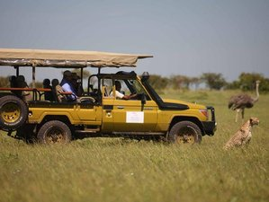 5 Days Maasai Mara Great Safari in Kenya