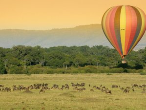 8 Days All-Inclusive Yoga, Hiking Kilimanjaro, and Serengeti Safari in Tanzania