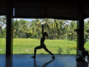 6 Tage Body, Mind, Soul Yoga Retreat auf der Insel der Götter in Ubud, Bali