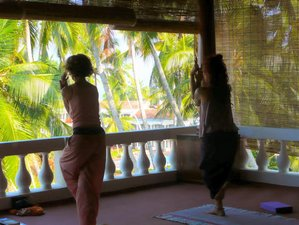 14-Daagse Relaxte Yoga Retraite in India