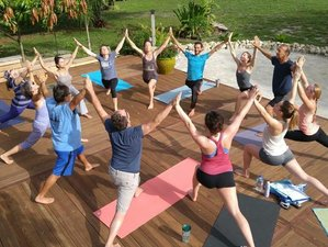 8 Days New Year Yoga Retreat in Costa Rica