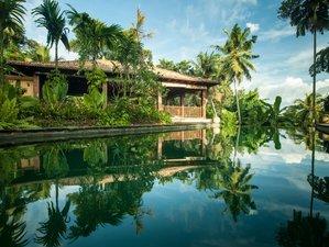 6 Days Jungle Yoga Retreat in Southern Province, Sri Lanka