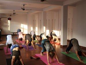 27 Days 200-Hour Hatha Yoga Teacher Training Course in Rishikesh, India