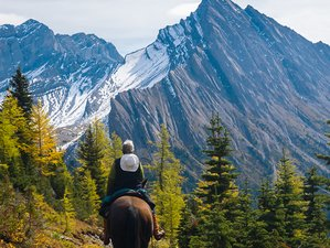 4 Days Erling Strom Trail Riding Holiday in Banff, Canada