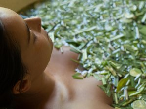 6 Day Rejuvenating Ayurveda, Meditation and Wellness Yoga Retreat Ubud, Bali