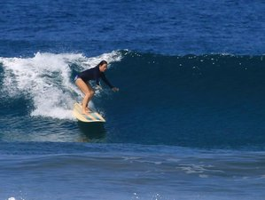 8 Days Bacpacker's Surf Camp in Nosara, Costa Rica