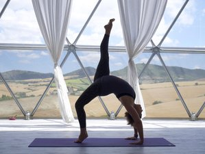 "6 Days ""Vino and Vinyasa"" Wine and Yoga Holiday in Andalusia, Spain"