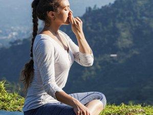 4 jours en week-end de yoga, méditation et relaxation pour se ressourcer à Villelaure, Provence