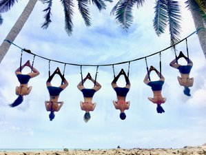 8 Day 50hr Aerial Yoga TTC in Koh Phangan, Thailand