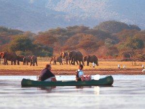 6 Days Fantastic Wildlife Safari in Tanzania