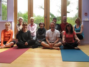5 Days Summer Yoga Retreat in UK