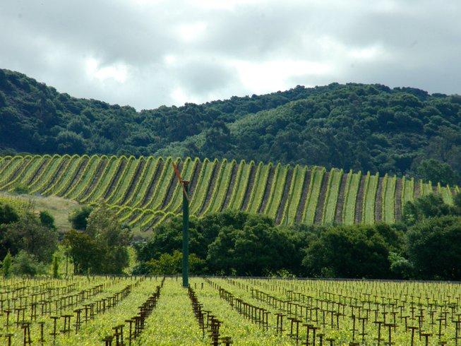 10 Days San Francisco Wine Tour & Trekking Holiday