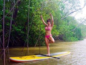 6 Days Unplug & Detox Yoga in Costa Rica