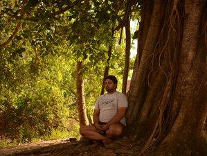 24 Days 200 Hour Yoga Teacher Training in Dharamsala, India