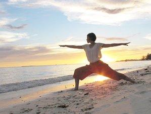 8 Days Yoga Retreat in Borneo Rainforest, Malaysia