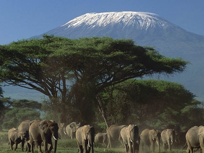 5 Days Marvelous Kenya Safaris
