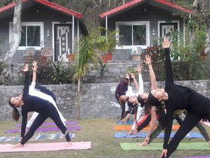 7 Days Beginner Yoga and Meditation Retreat in Rishikesh, India