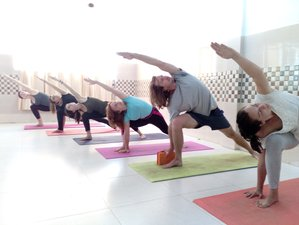 28 Days 200-Hour Hatha Yoga Teacher Training in Rishikesh, India