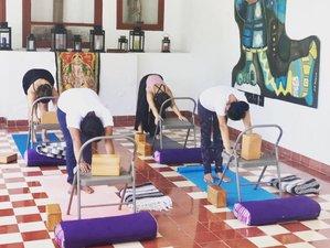 15 días, 200 horas de profesorado de yoga en playa de Yucatán, México
