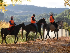 7 Day Endurance Horse Riding Holiday in Ademuz, Valencia