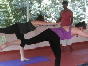 5-Daagse Meditatie en Yoga Retraite in India