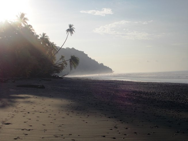 22 Days 200-Hour YTT at Tiskita, Costa Rica