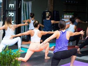 6 Week 50-Hour Yin Level 1: Traditional Chinese Medicine Mindfulness Philosophy Online Training