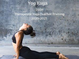 250-Hour Online Foundational Therapeutic Yoga Teacher Training