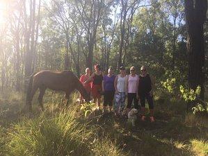 3 Days Mindfulness and Wellness Retreat in Lamington National Park, Australia