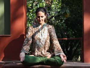 10 Day Ayur Yoga Therapy Retreat in Rishikesh