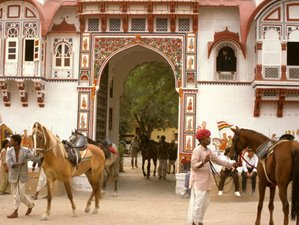 6 Day Cultural Horse Riding Holiday in Rajasthan